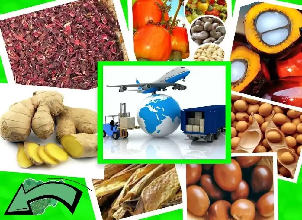 export of non oil agro products and raw materials